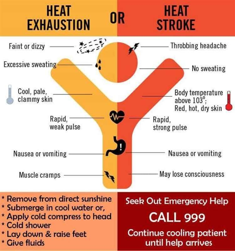 The differences between heatstroke and heat exhaustion