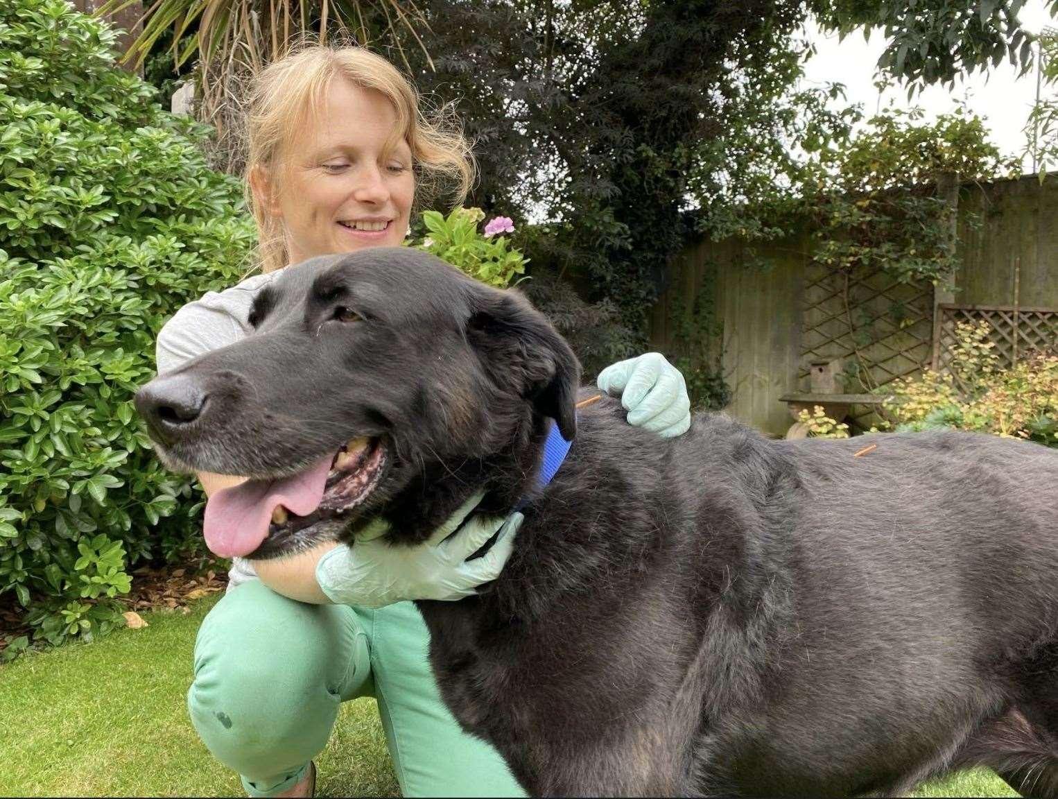 Carole with senior pooch Tilly.