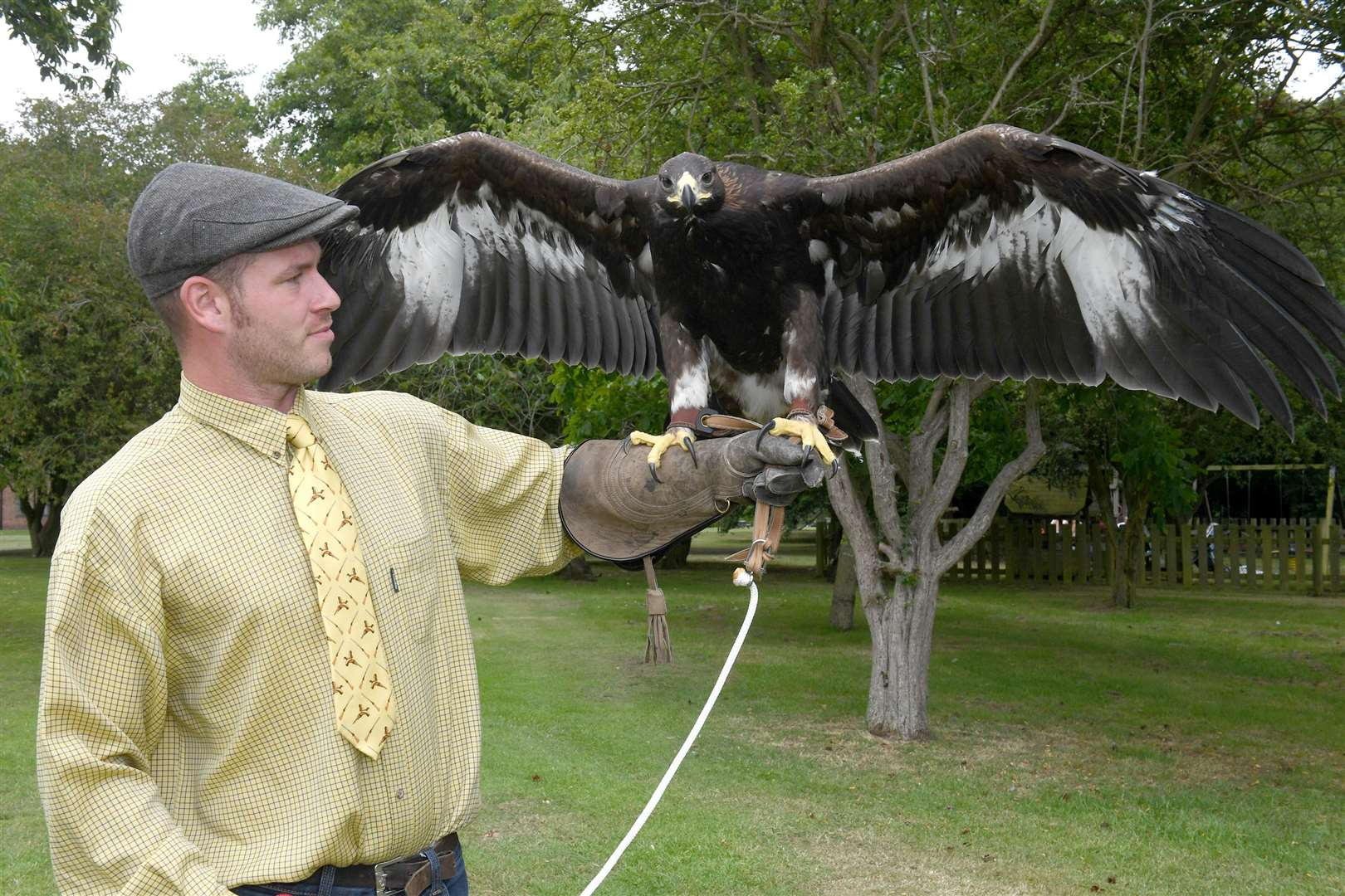 M.E.Falconry based at Kelham Hall. Owen Pibworth with his Golden Eagle called Dolly.. (38826950)